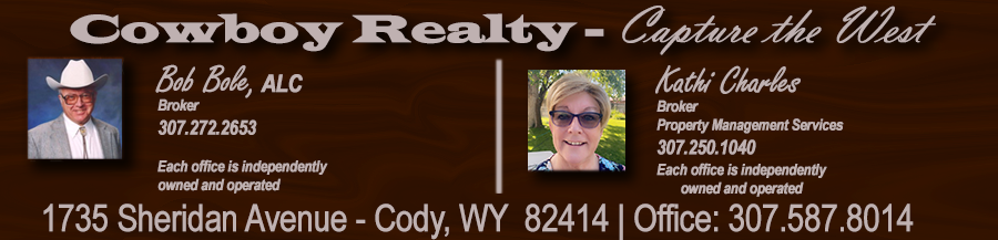 Cowboy Realty - Capture the West!